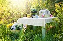 Kingswood v letní kampani #piknikujeme posílá piknikové košíky na cestu Českem